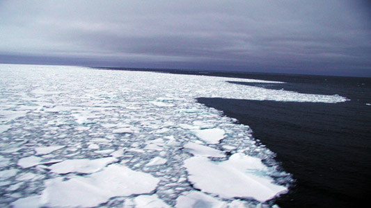 pack ice sea ice edge in southern ocean