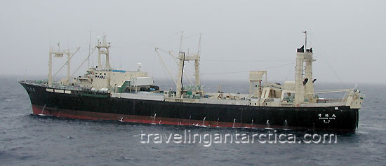 Japanese Whaling Ships in Australian Antarctic Waters